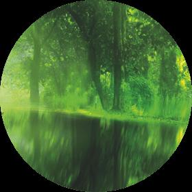 HEETS Green